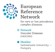 European Reference Network for rare or low prevalence complex diseases - Vascular Diseases Network (VASCERN)